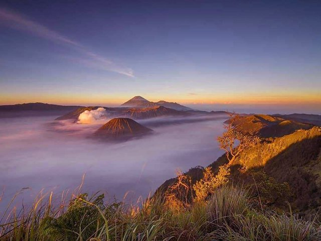 bromo sunrise viewpoint - Bromo Ijen Tour 3 Days